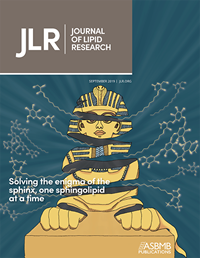 JLR_COVER_SPHINX_2019_V1.png