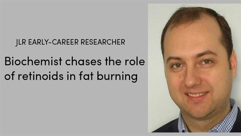 Biochemist chases the role of retinoids in fat burning