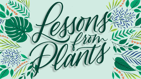 Lessons from plants: A changing environment