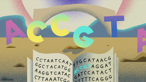 The NIH is turning the human reference genome into a pangenome