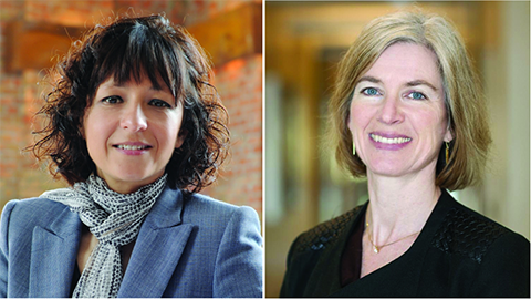 Charpentier and Doudna win chemistry Nobel