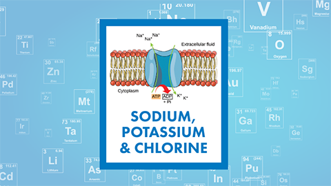 For March, it's a renal three-fer: sodium, potassium and chlorine