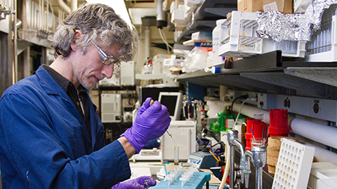 Technicians and lab managers play essential roles in academic research labs