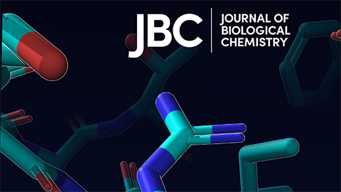 JBC seeks new editor-in-chief