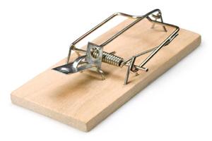 EPD_mousetrap
