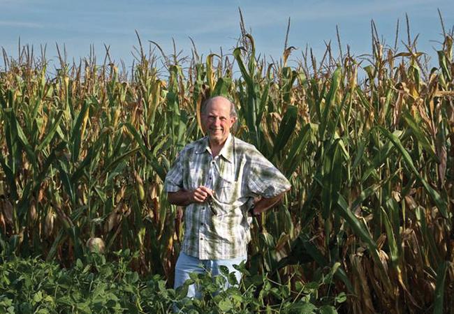 F. Peter Guengerich in a cornfield