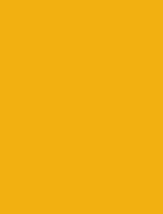Golden Goose icon