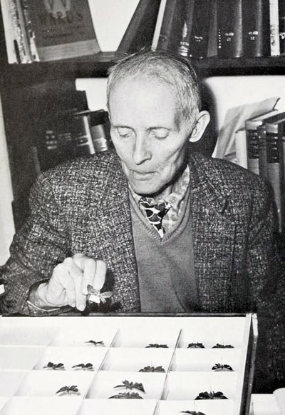 Francis Xavier Williams