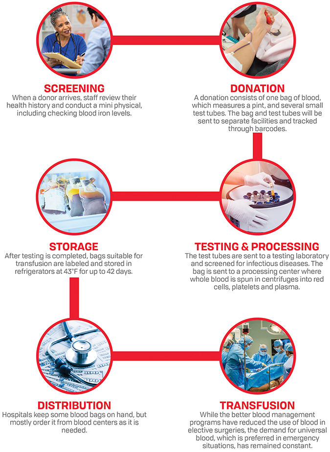 Blood donation process from screenging to transfusion