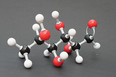 Fucose molecule