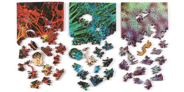 Microscopic art puzzles